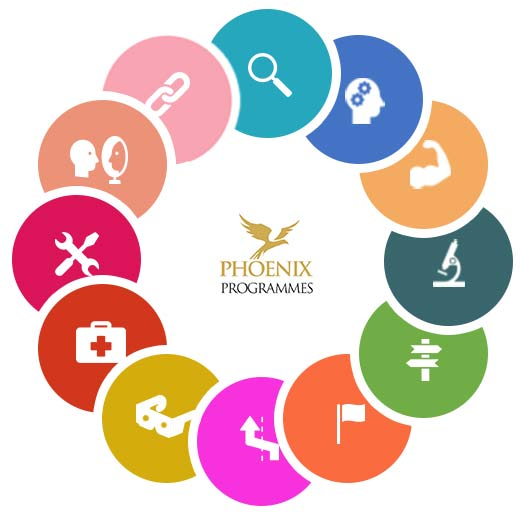 The 12 Step Phoenix Therapy Model - Alcohol & Drug Problems, Rehab & Addiction Treatment Centre in Spain